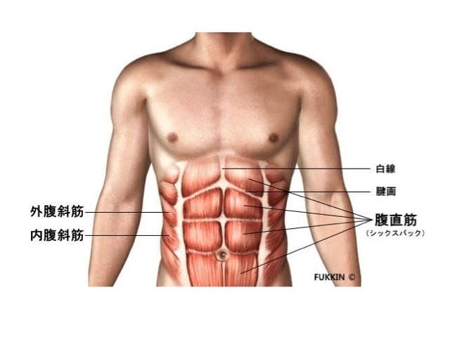 パーソナルトレーニング 腹筋群