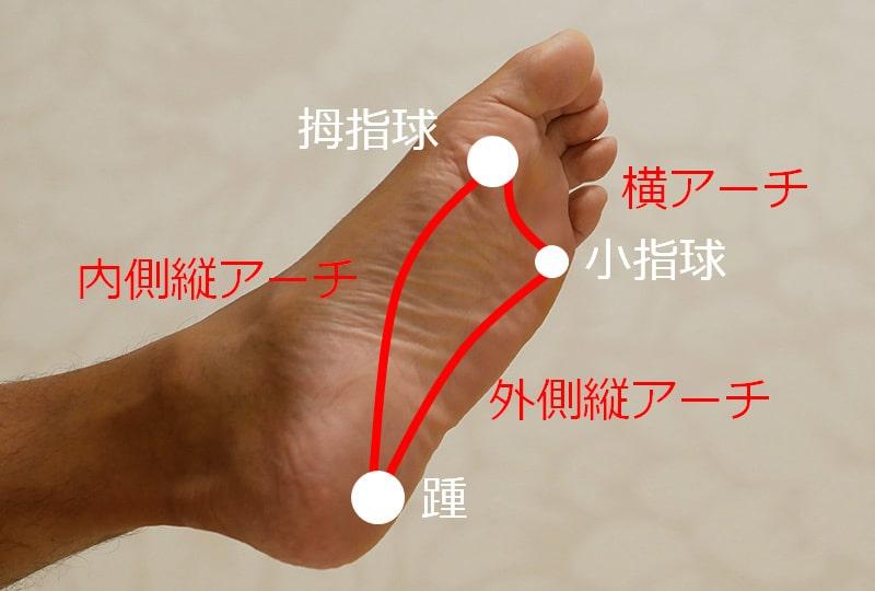 足裏のアーチ