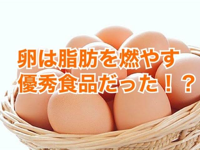 卵 ダイエット