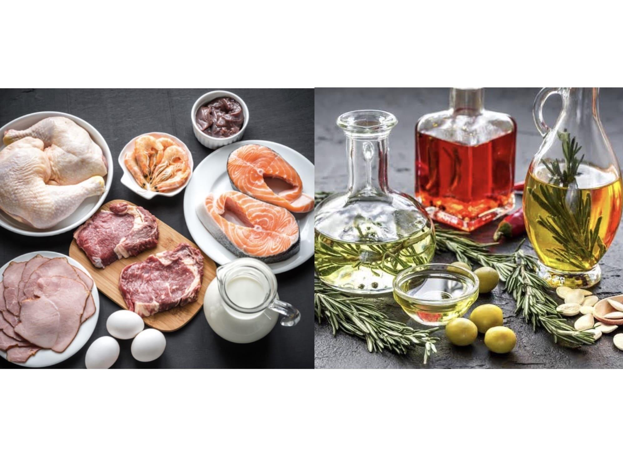 タンパク質脂質